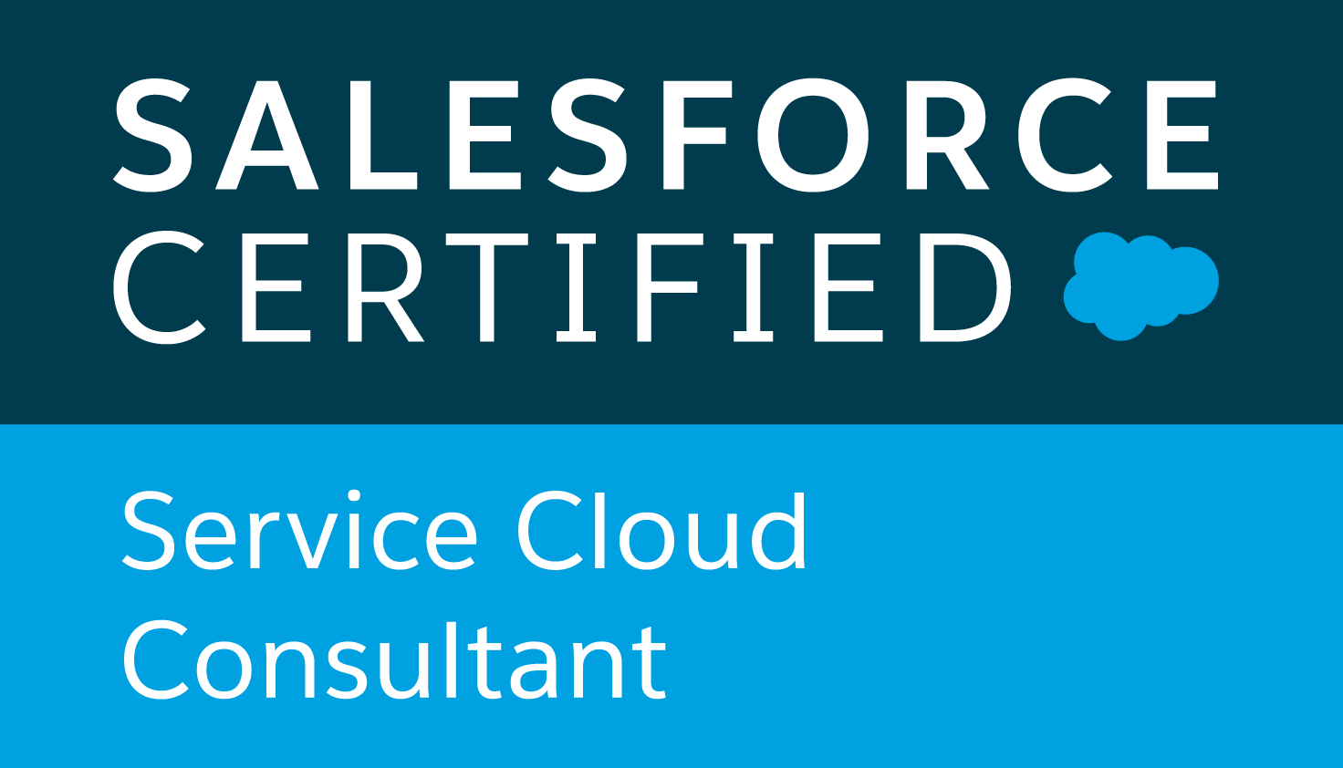 Salesforce: The Detail Department